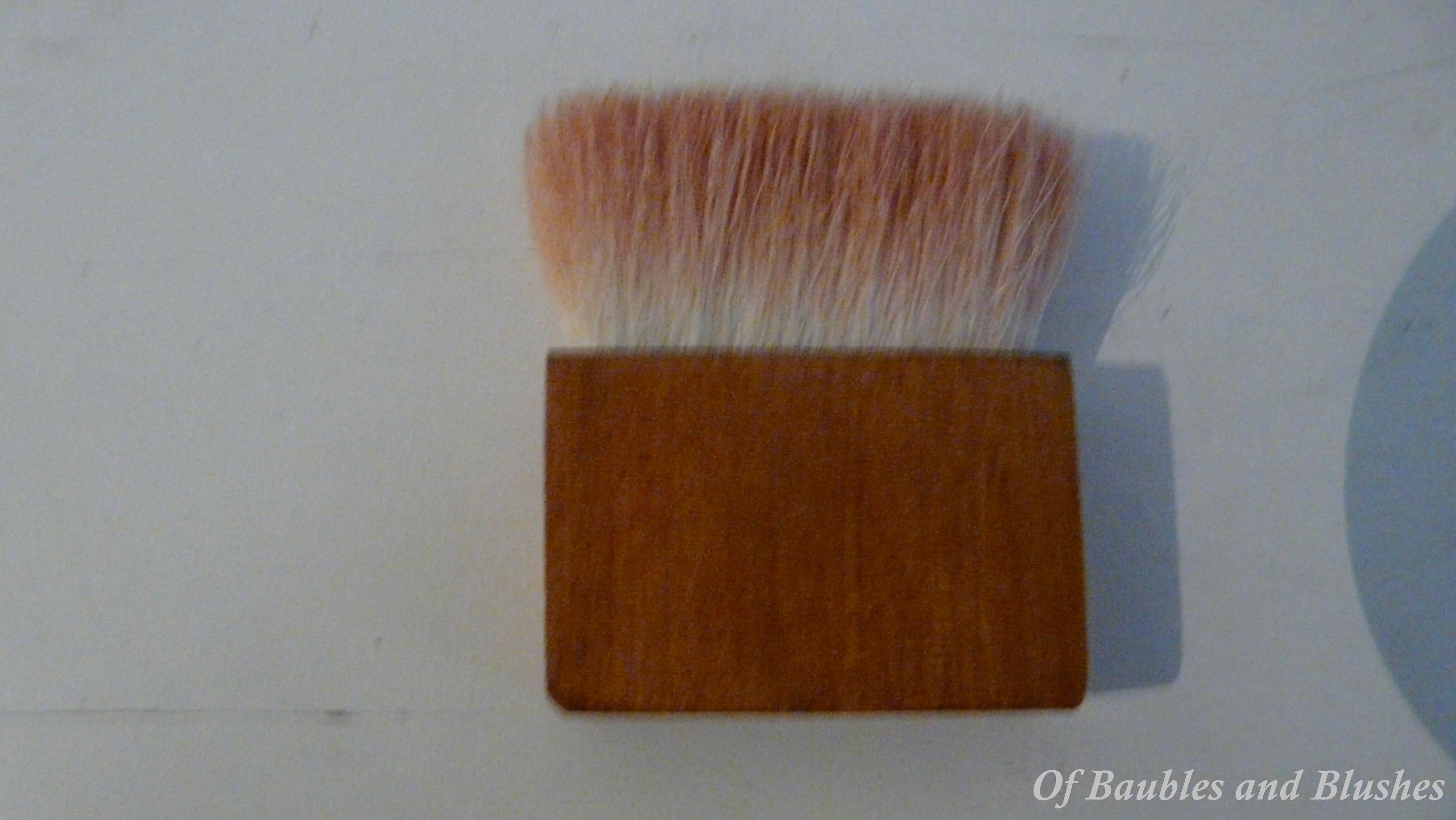 Coralista brush4